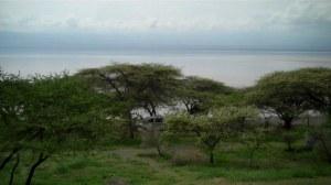 Am Lake3 07s