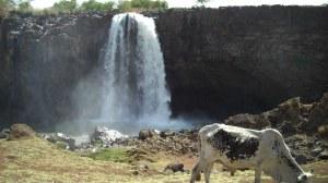 Wasserfall2 02s