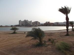 Eilat DSCF0008