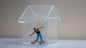 Glashaus2